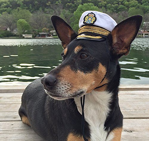 Pampered Whiskers Captain Hat for Dogs - Commanding Officer Naval hat (4.5