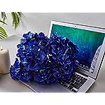 Kislohum-Hydrangea-Silk-Flower-Heads-10-Royal-Blue-Artificial-Hydrangea-Silk-Flowers-Head-for-Wedding-Centerpieces-Bouquets-DIY-Floral-Decor-Home-Decoration-with-Long-Stems