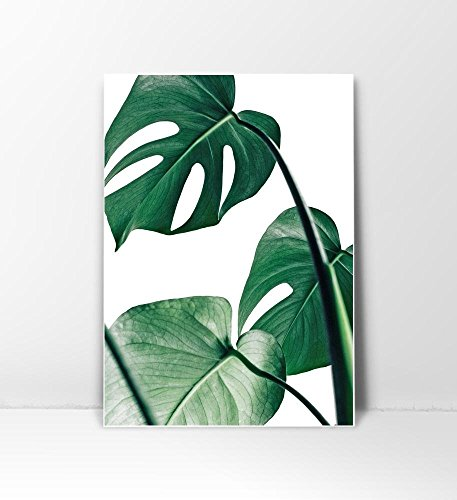 Tropical Leaf Print, Botanical Print, Palm Print, Monstera Art, Green Plant Prints, Leaf Photography, Leaf Print, Green Plant Print, Tropical Art Print, Green Leaves Art, Bohemian Art, Boho Art, (Bohemian Art)