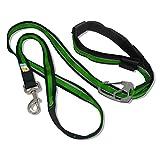 Kurgo 6-in-1 Quantum (TM) Hands Free Dog Leash for Walking, Running or Hiking & Reflective Dog Leash with Adjustable Waist Belt, Grass Green