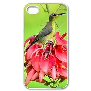 Iphone 4,4S Bird Phone Back Case DIY Art Print Design Hard Shell Protection AQ073129