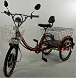 Ultimate TD Adult Electric Tricycle