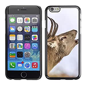 Print Motif Coque de protection Case Cover // F00001739 Cerf Brame rodera // Apple iPhone 6 6S 6G 4.7""