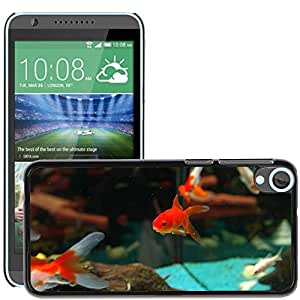 Super Stella Slim PC Hard Case Cover Skin Armor Shell Protection // M00106591 Fish Goldfish Freshwater Fish // HTC Desire 820