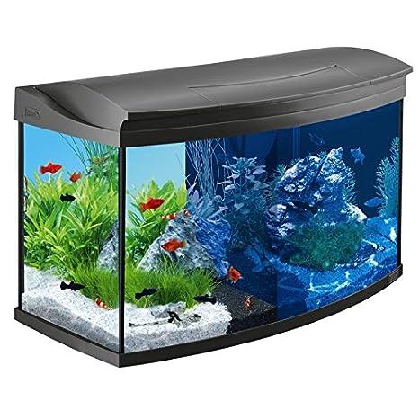 Tetra AquaArt Evolution Line - Juego completo de acuario LED (100 L) Best For Your Fish Habitats: Amazon.es: Productos para mascotas