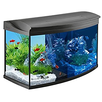 Tetra AquaArt Evolution Line - Juego completo de acuario LED (100 L) Best For Your Fish Habitats: Amazon.es: Productos para mascotas