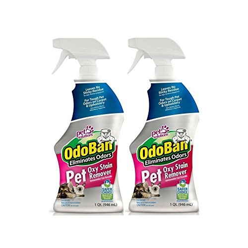OdoBan Pet Oxy Stain Remover, 32 fl. oz. Spray 2 Pack – Deep Cleaning for Tough Odors
