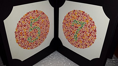 Latest Edition 24 PLATE ISHIHARA TESTS BOOK - FOR COLOR BLINDNESS TESTING EYE