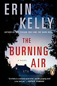 The Burning Air by Erin Kelly ebook deal