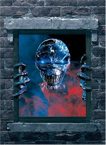 Iron Maiden: Visions of the Beast (Collection Maiden Iron)