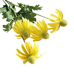 Leegor 1 Bouquet 2 Heads Real Touch Artificial Aster Chrysanthemum Fake Flowers Simulation Floral Home Wedding Decor Hotel Party Event Decorations Photography Show Props (yellow) 97
