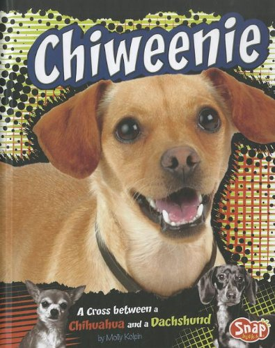 Read Online Chiweenie: A Cross Between a Chihuahua and a Dachshund (Designer Dogs) ebook