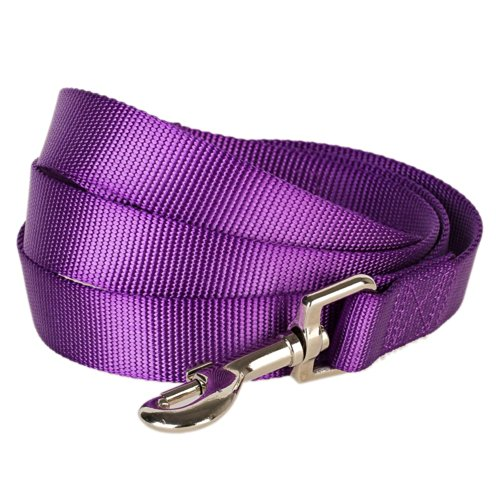 Blueberry Pet 19 Colors Durable Classic Dog Leash 5 ft x 5/8
