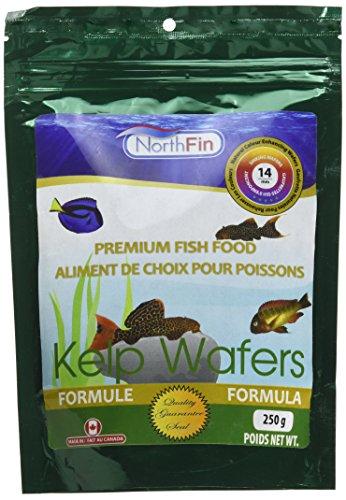 Northfin Food Kelp Wafers 14Mm Pellet 250 Gram Package
