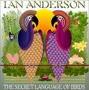 Secret Language of Birds