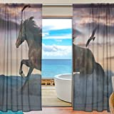SEULIFE Window Sheer Curtain, Animal Horse Bird Voile Curtain Drapes for Door Kitchen Living Room Bedroom 55x78 inches 2 Panels