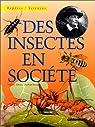 Des insectes en société par Albouy