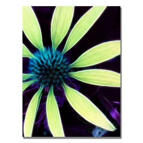 Trademark Fine Art Lime Green Coneflower by Kathie McCurdy Canvas Wall Art, 26x32-Inch