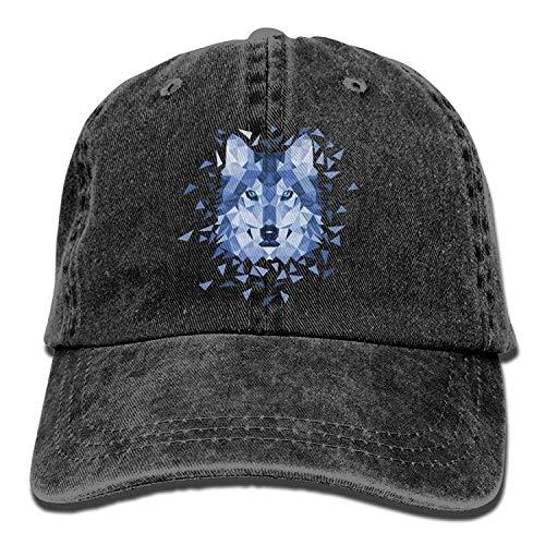 (Abdul. Wolf 2 Denim Hat Adjustable Womens Low Baseball Caps)
