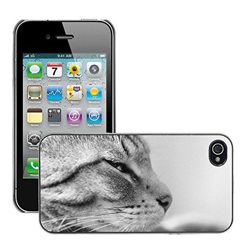 Bild Hart Handy Schwarz Schutz Case Cover Schale Etui // M00135516 Cat Black White Tier // Apple iPhone 4 4S 4G
