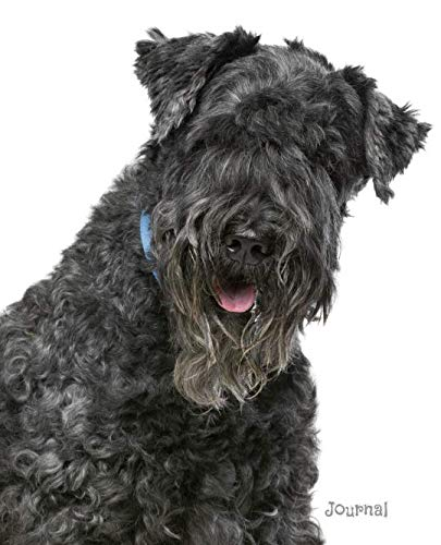 Journal: Kerry Blue Terrier Notebook