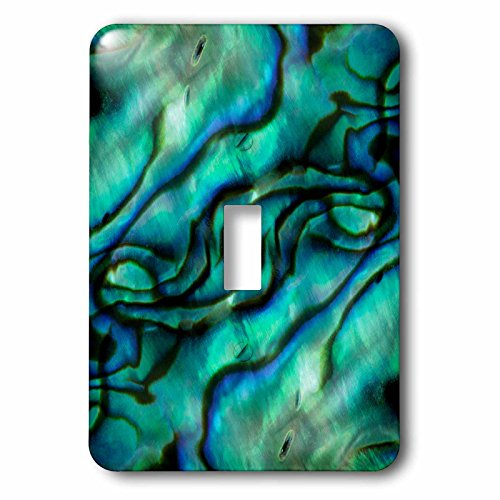 [Danita Delimont - Abstract - USA, Colorado, Lafayette. Abalone shell montage. - Light Switch Covers - single toggle switch (lsp_230360_1)] (Pattern Toggles)