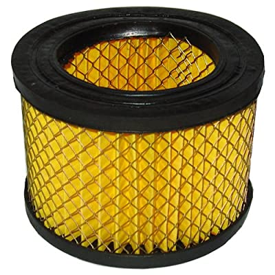 Powermate Vx 019-0221RP Air Filter Element - 1-Piece