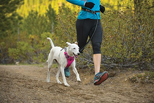 Ruffwear Front Range All Day Adventure Harness For Dogs