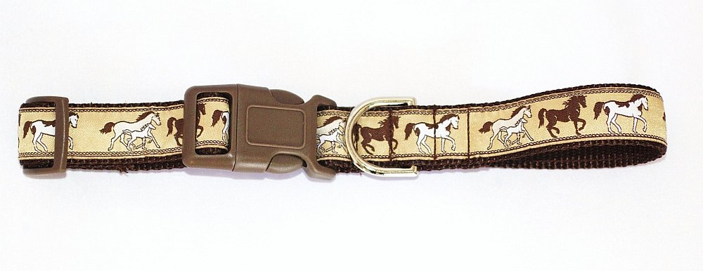 The Dog Squad 14-17-Inch Big Dog Webbing Pet Collar, Medium, Horses