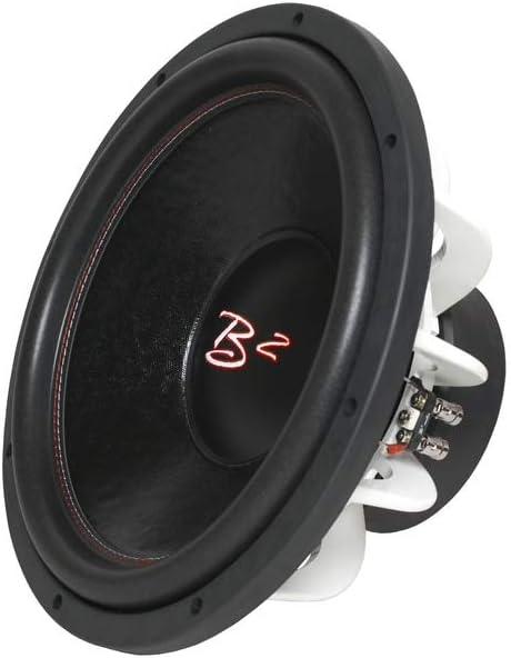 B2 Audio 10 RIOT Series Subwoofer
