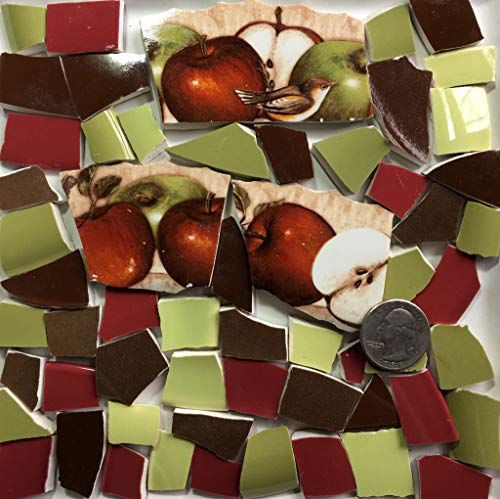 Mosaic Art & Craft Supply ~ Apples & Birds w/Red Green & Brown Tiles (B115)