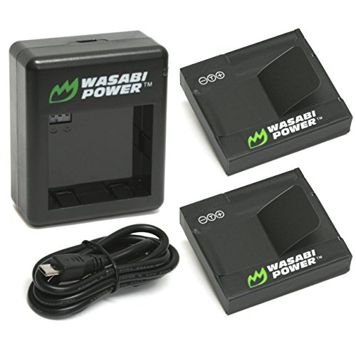 Wasabi Power Battery  and Dual USB Charger for YI Action Cam
