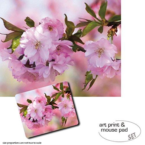 Set Set Set Regalo: 1 Póster Impresión Artística (50x40 cm) + 1 Alfombrilla para Ratón (23x19 cm) - Flores, Flores De Cerezo 2abc6d