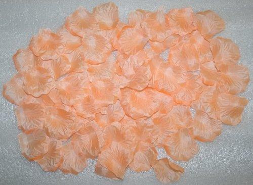 Wholesale Lot 3000 PCS Peach Color Silk Rose Petals Wedding Flower Decoration Wf-035