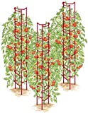 Gardener's Supply Company Red Tomato Ladders, Heavy Gauge, Set of 3