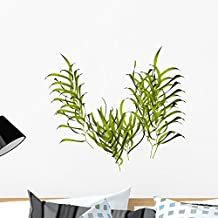 Kelp Wall Decal by Wallmonkeys Peel and Stick Graphic (24 in W x 18 in H) WM165432