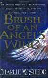 img - for Brush of an Angel's Wing book / textbook / text book