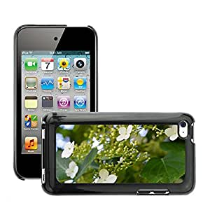 Etui Housse Coque de Protection Cover Rigide pour // M00308260 Planta Jardín enredadera Naturaleza // Apple ipod Touch 4 4G 4th
