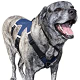 Newbury Paws Classic Harness, Premium Dog Harness for Large Breed Dogs (XL / Bright Stripes)