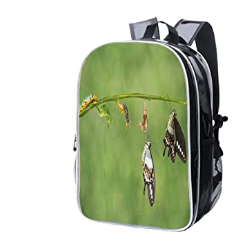 0b04de1847 Fashion Custom Laptop Backpack-Leisure Travel Backpack Transformation Life  Cycle of Banded Swallowtail Butterfly (