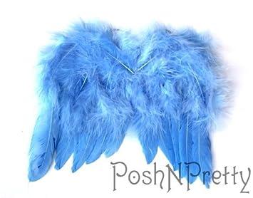 Amazon.com: Natural de plumas ángel Mariposa Alas, recién ...