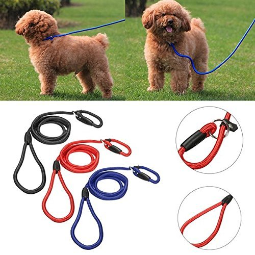 Bazaar 1cm Diameter Nylon Slip Rope Walk the Dog Pet Lead Leash Soft Strong Working Training Big Bazaar