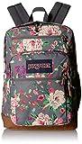 JanSport Cool Student 15-inch Laptop Backpack - School Bag, Grey Bouquet: more info