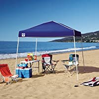 Z-Shade 10' x 10' Instant Canopy + $10.40 Sears Credit