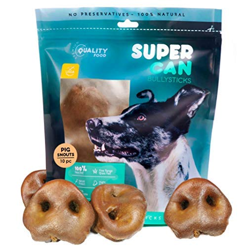 SUPER CAN BULLYSTICKS Baked Pig Snouts for Dogs [10 ct ] Premium Treats, NOT Puffed 100% Natural Tasty Pork Chews.