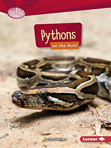 Pythons on the Hunt (Searchlight Books)