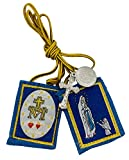 Our Lady of Lourdes brown Mt.carmel scapular by
