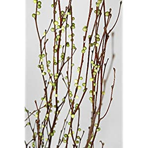 Wayhome Fair Birch Branches with Green Berries 4ft - Excellent Home Decor - Indoor & Outdoor 61