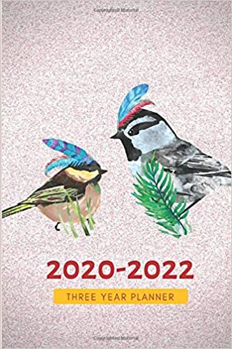 3 Year Planner 2020-2022 Cardinal Dove Three Years Monthly ...
