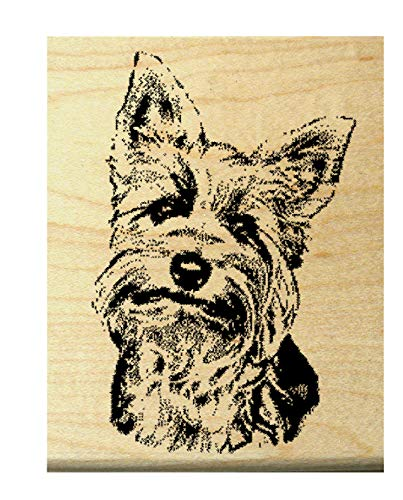 "P10 Yorkshire terrier rubber stamp WM 2.25x1.5""""Queenie"""